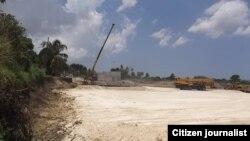 Reporta Cuba Iguanas en peligro foto José Antonio Sieres Ramallo