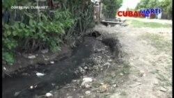 Dengue prolifera a causa de insalubridad en la isla